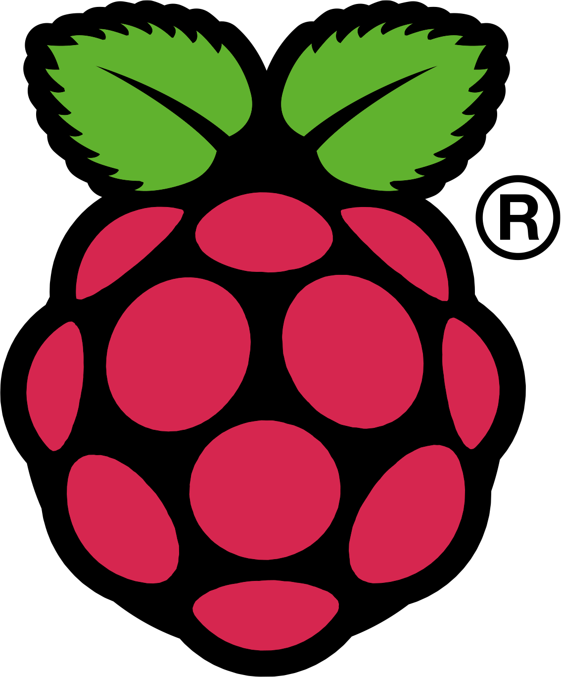 Powered by Raspberry Pi