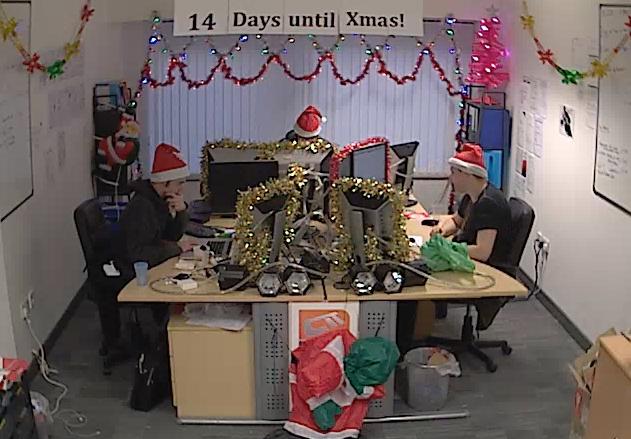 Setup A Live Christmas Tree