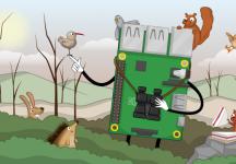 Winter Wildlife Homepage