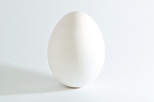 White_chicken_egg