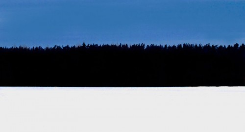 800px-Estonian_flag_winter_forest