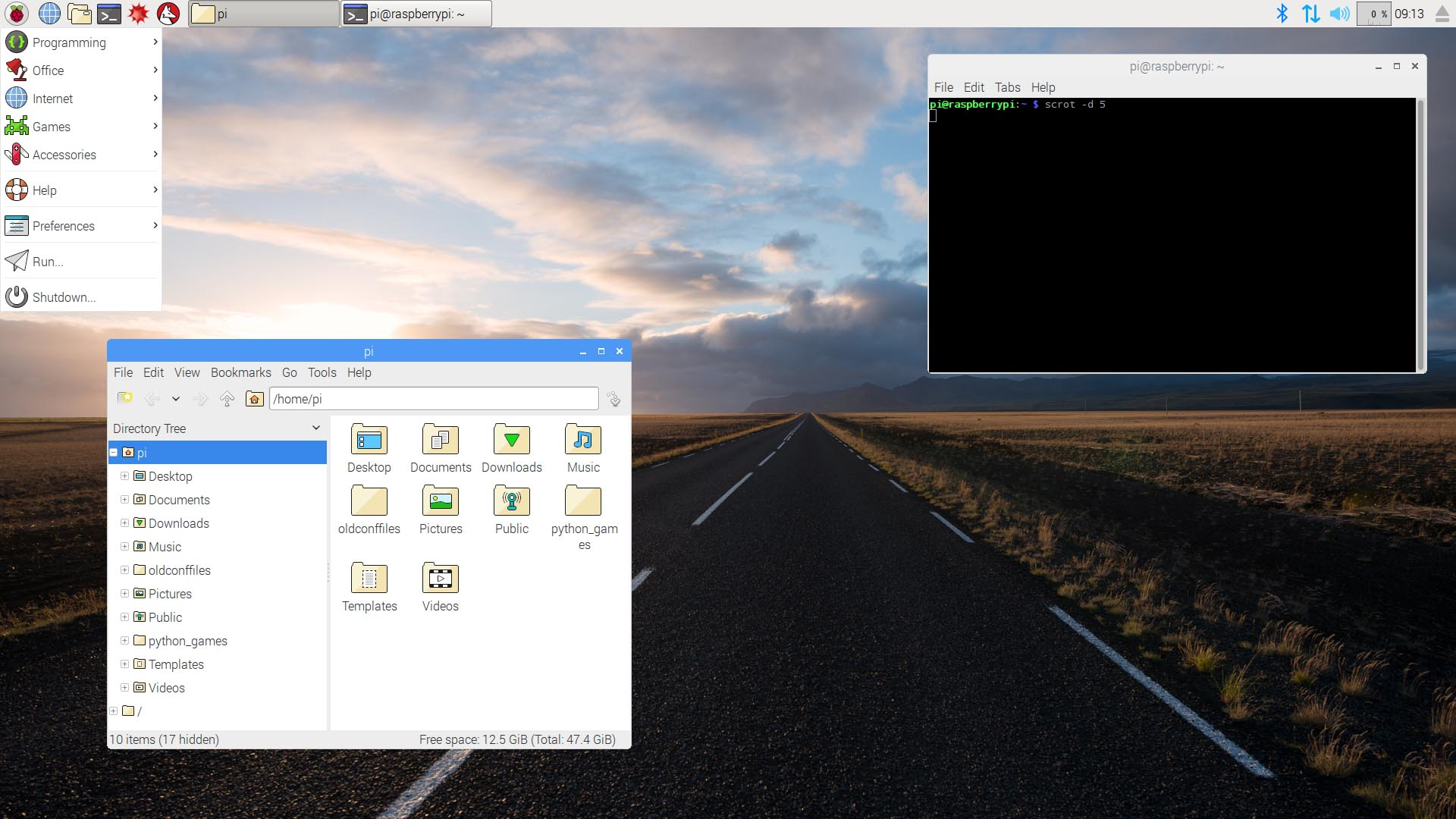 Screenshot of clean Raspbian desktop