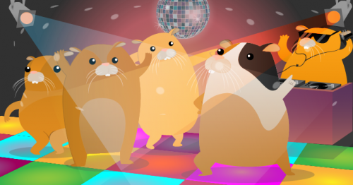 Hamster Party Cam Raspberry Pi pet-themed resources