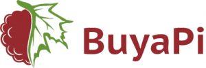buyapi - New Raspberry Pi Zero Distributors