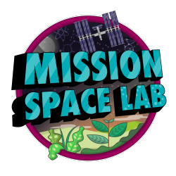 Astro Pi Mission Space Lab logo