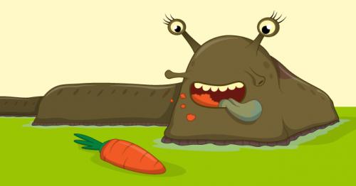 Raspberry Pi Sense HAT Slug free resource