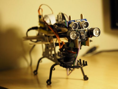 Petoi Raspberry Pi Robot Cat — skeleton prototype