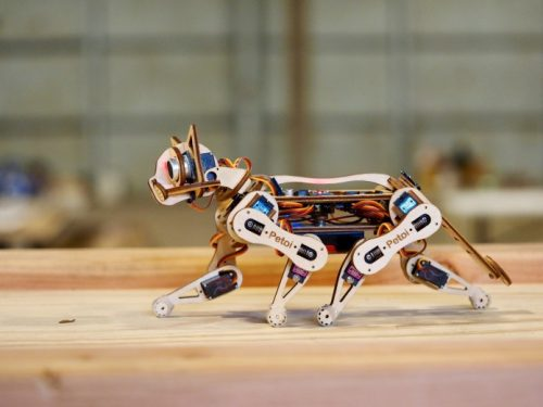 Build your own robotic cat: Petoi returns