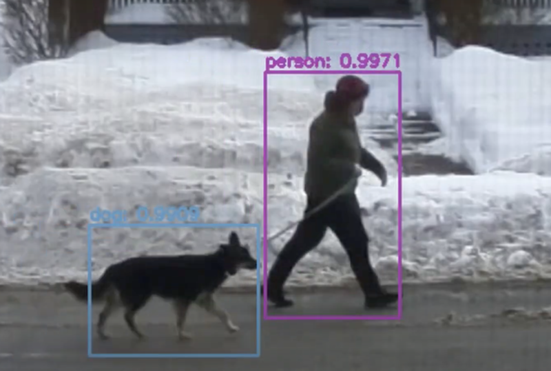 A machine learning image with a human and a dog circled in different colours