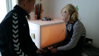 children watching over the incubator