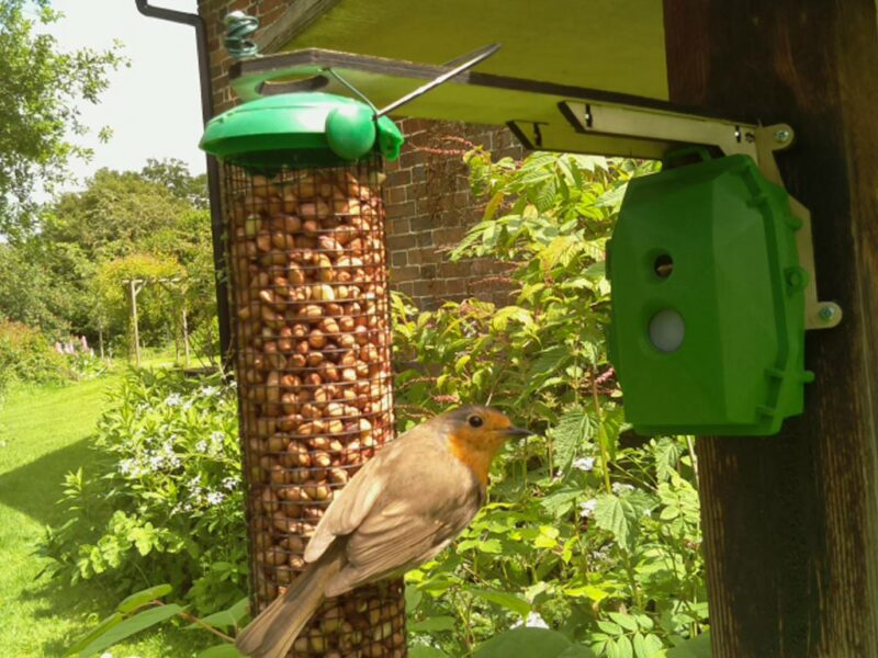 The Naturebytes camera case keeps all the components of an automated bird and wildlife camera neat and tidy